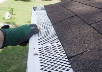 roof clean service